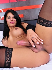 Sexy tgirl Cassia posing her huge fat dick in sexy stockings